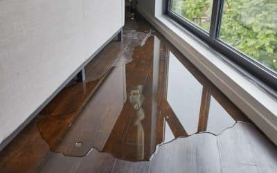 How to Repair Water Damaged Wood Floors